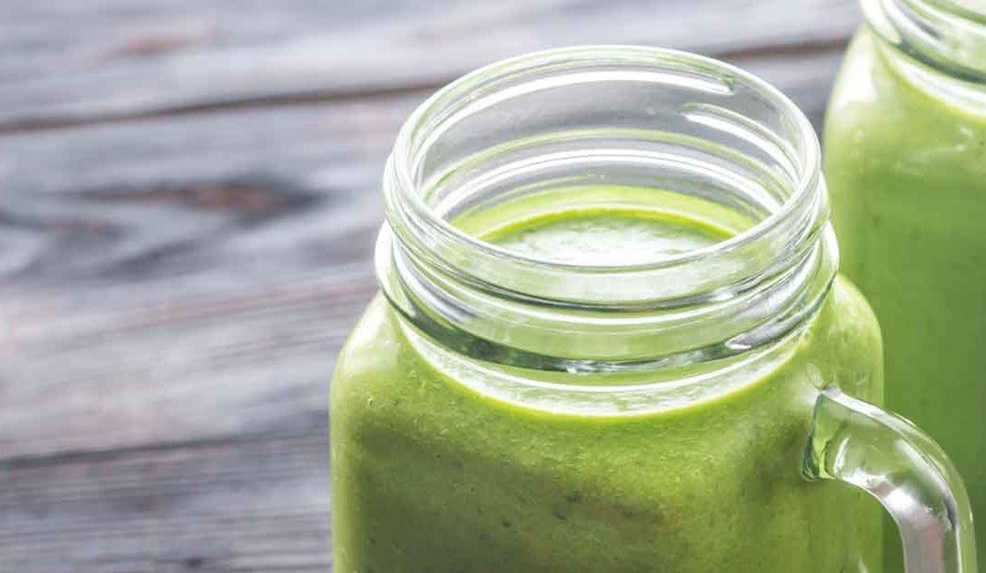 Organic Kamut Wheatgrass – The Rejuvenating Supplement Your Body Needs