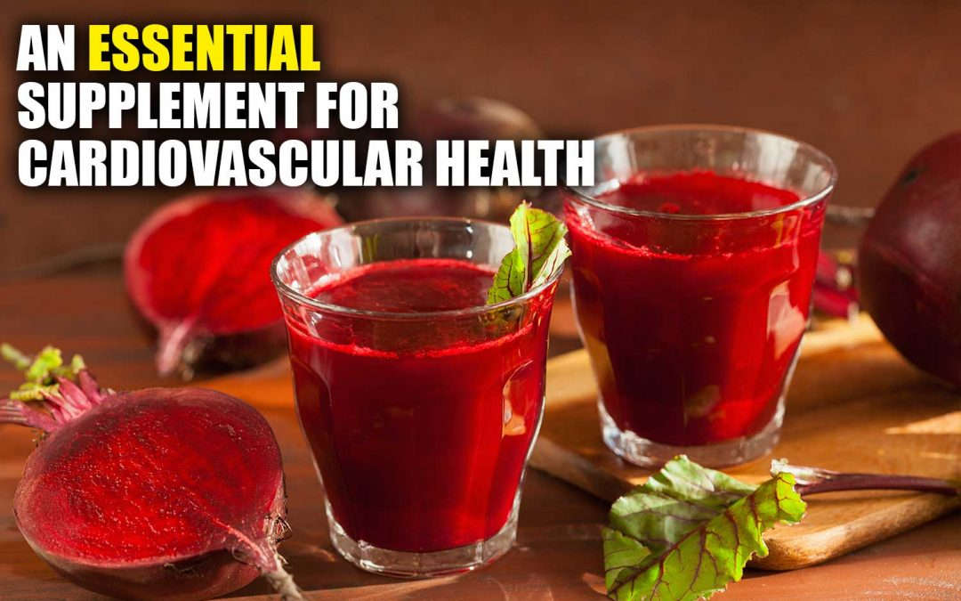 Organic Beet Juice Powder – An Essential Supplement for Cardiovascular Health