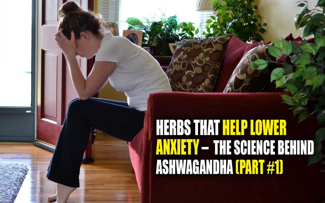 Herbs That Help Lower Anxiety – A Deep Exploration Into the Science Behind Ashwagandha (Part #1)