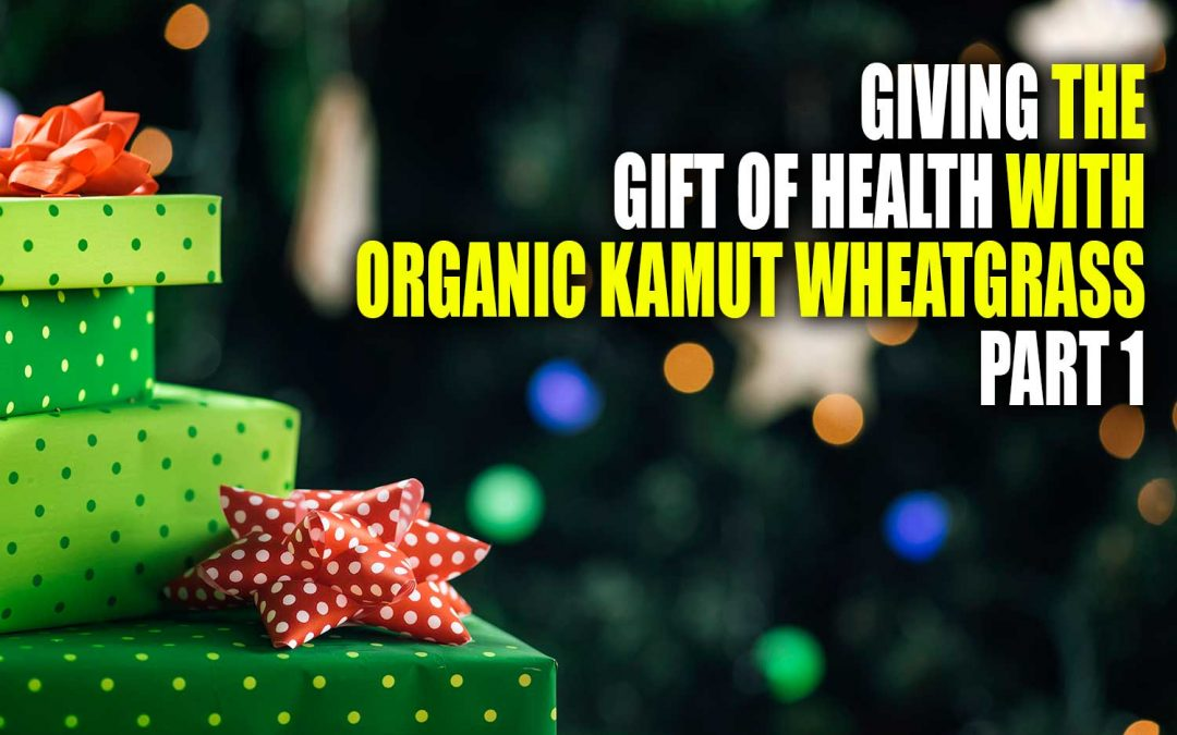 Giving the Gift of Health with Organic Kamut Wheatgrass – Part 1