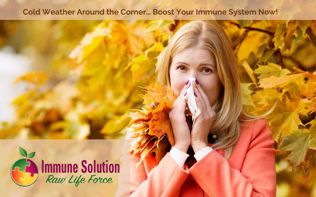 Cold Weather Around the Corner… Boost Your Immune System Now!
